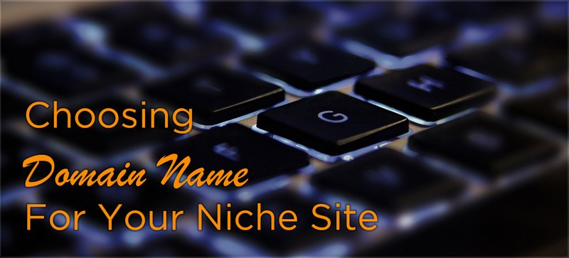 How to Choose a Niche Domain For Your Site